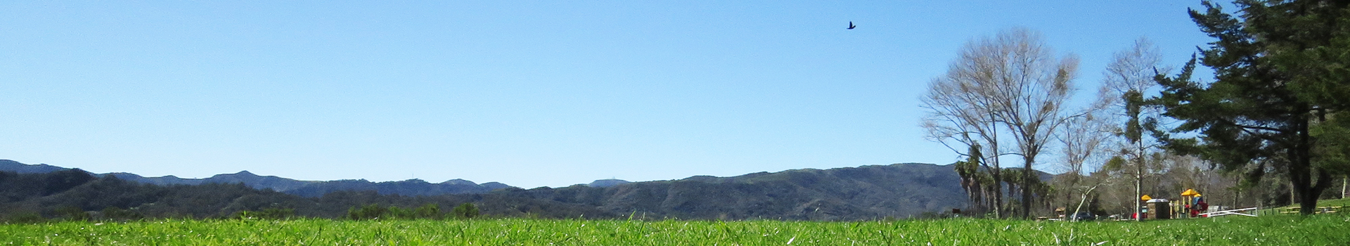 Camping at the Lake Casitas Recreation Area | Casitas